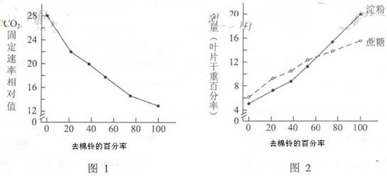 1.下列真核细胞结构与成分,对应有误的是   A、细胞膜:脂质、蛋白质、糖类   B、染色体:核糖核酸、蛋白质   C、核糖体:蛋白质、核糖核酸   D、细胞骨架:蛋白质   答案:B   解析:上题主要考查学生对基础知识的掌握情况,总体难度较低。其中染色体未真核细胞中遗传物质的载体,由DNA(脱氧核糖核酸)和蛋白质构成。   2.