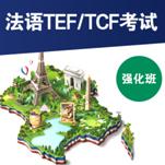 法语TEF/TCF强化班